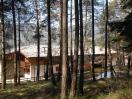 casa-val-di-cembra-bosco-alberi