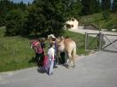 casa-levico-terme-pony