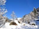 inverno paesaggio