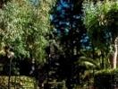 giardino1-cpfbordigera