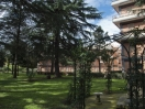 casa_per_ferie_roma_parco_gazebo