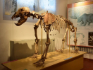 ostello-umbria-24-museo