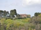 villa-orciano-panorama-montebello