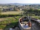 villa-orciano-terrazza