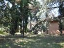 villa_castel_gandolfo_roma_parco_01