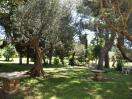 villa_castel_gandolfo_roma_parco_03