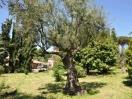 villa_castel_gandolfo_roma_parco_04