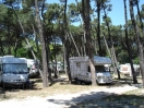 villaggio-parco-delta-po-camper