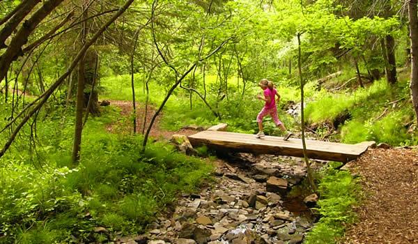 Orienteering lo sport dei boschi