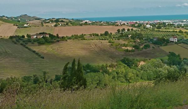 Mare, natura e cultura nelle Marche
