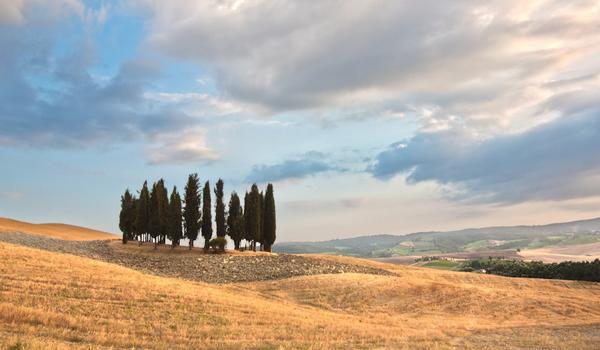La Toscana, proposte di viaggio