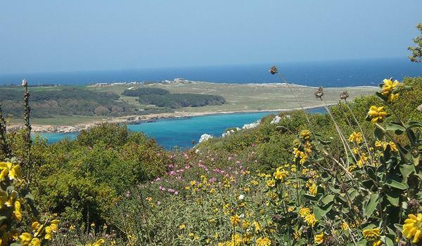 Vacanze di mare: le spiagge più belle del Salento
