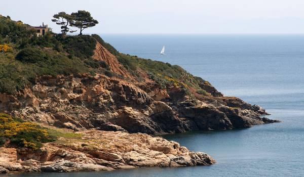 Come raggiungere l'Isola d'Elba