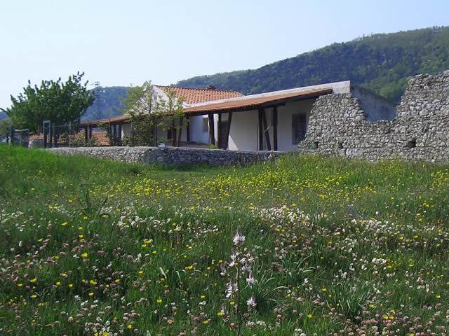 Casa vacanze sul Gargano rif. 416
