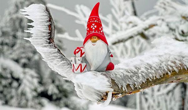 Mercatini di Natale in bus partenze da vari paesi