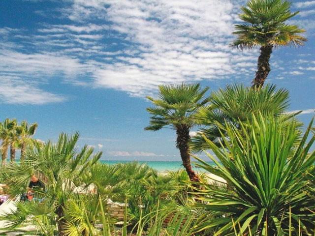 San Benedetto del Tronto: la riviera delle Palme