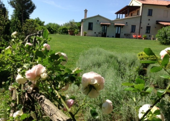 Agriturismo con piscina nelle Marche rif 1187