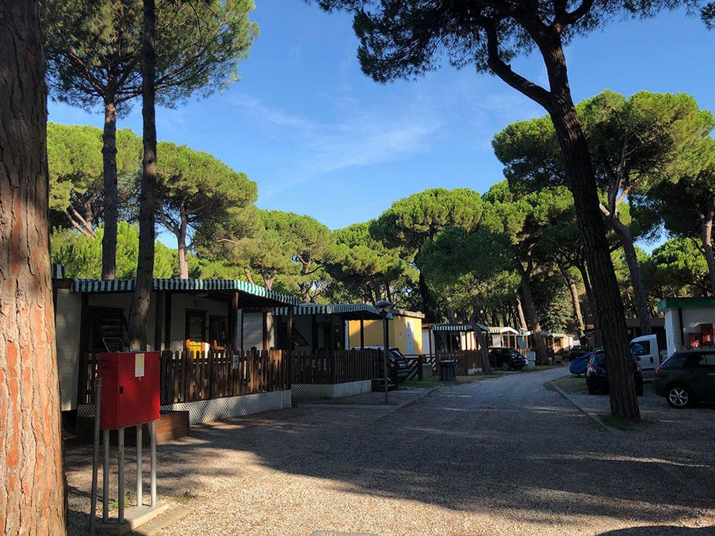 Camping Villaggio a Marina di Ravenna rif. 1207