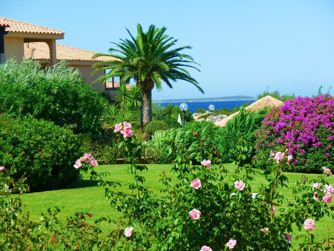 Villaggio con appartamenti nel Golfo di Marinella rif 1197